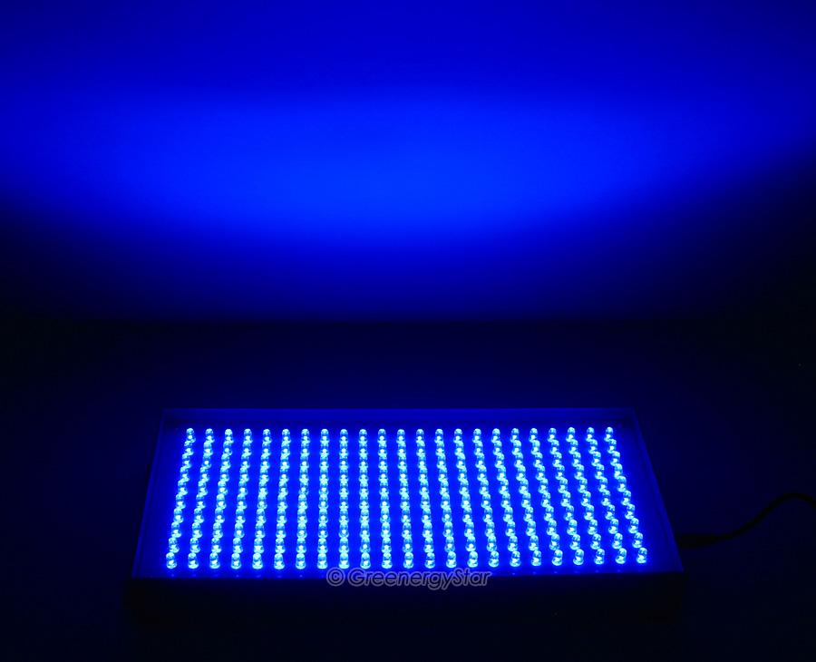 16W 230pcs Blue LED Grow Light Panel 100V 240V 50 60Hz