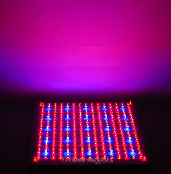 16w 229pcs Blue Red Orange Led Grow Light Panel 100v